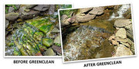 GreenClean Algaecide | Pond Additives
