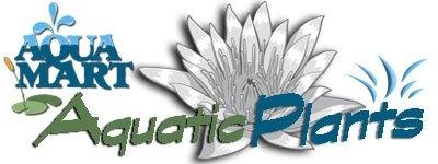 Image Aqua-Mart, Inc. / AquaMartPlants.com